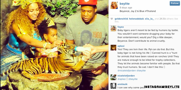 Animal-rights groups criticize Beyonce after tiger encounter