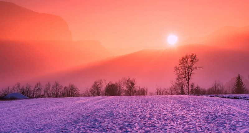 Snowy field in winter at sunset